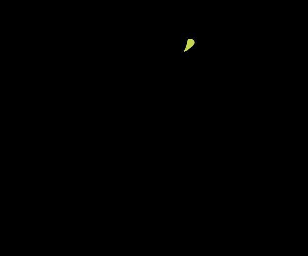 Ristorante di pesce a Rimini, ristorante di carne a Rimini, pizzeria a Rimini, Osteria e Pataca di Rimini a Marina Centro, ristorante di Rimini, pizzeria di Rimini, Osteria di Rimini.